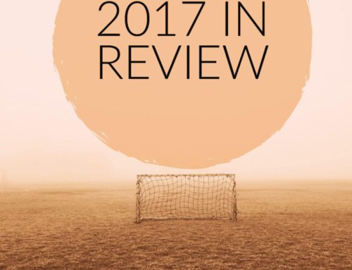 2017 in Review – Goals, News & Writing